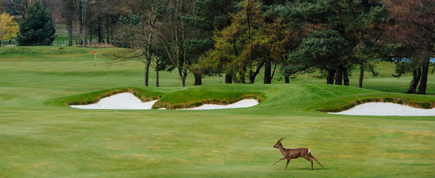 EDINBURGH'S NO 1 RANKED GOLF COURSE (Golf World 2019)